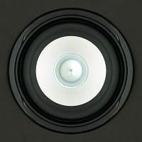 black and white ceiling speaker